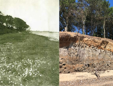 Cudmore Grove, then and now